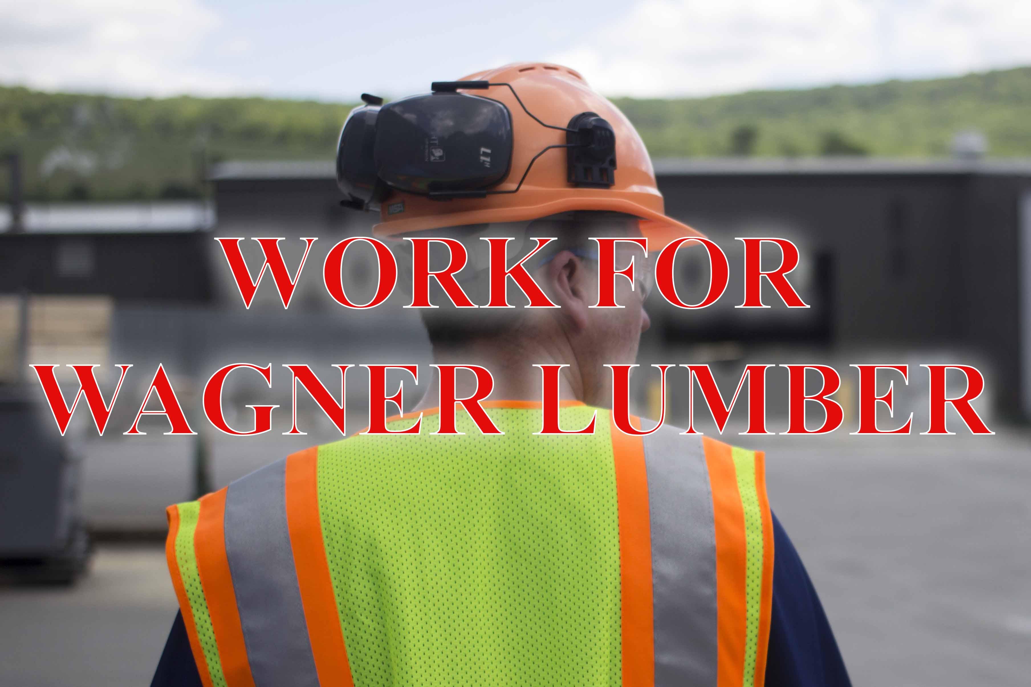 work for wagner 062117 0010